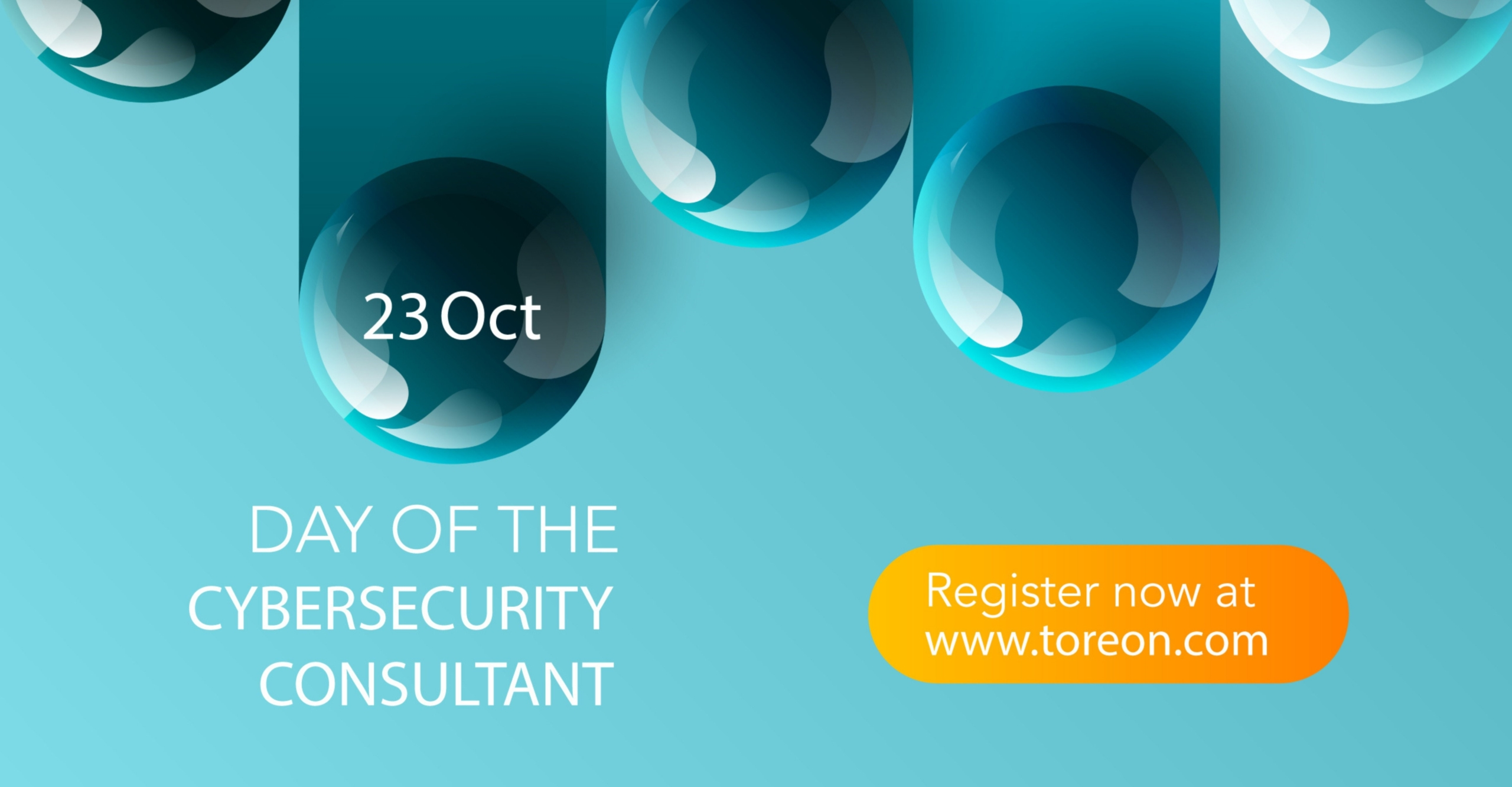 Day of the Cybersecurity Consultant